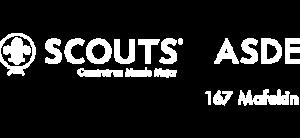 Grupo Scout 167